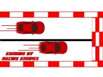 Racing-Stripes-2